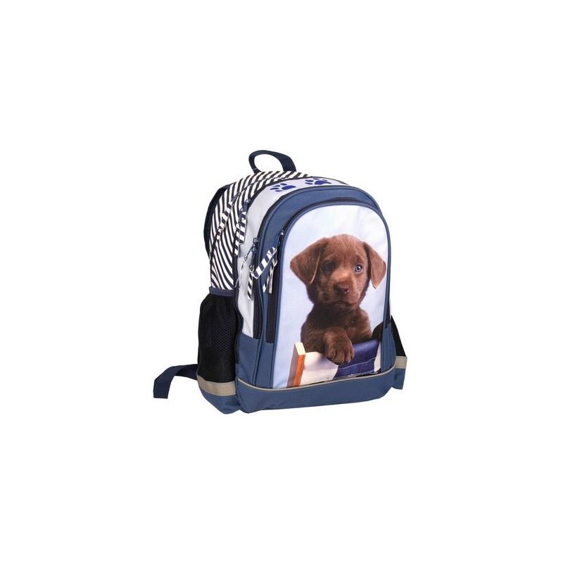 668f21efc49ea plecak pies, plecak szkolny, plecak dla dziewczynki, plecak trzy ...